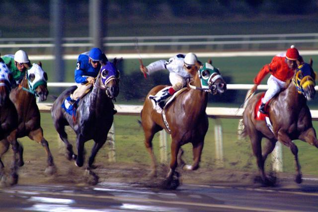 Online Horse Race Information